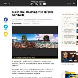 Major coral bleaching crisis spreads worldwide - CSMonitor.com