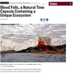 "Blood Falls, a ""bleeding"" glacier, is a natural time capsule containing a unique ecosystem"