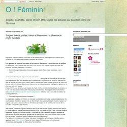 Soigner bobos, plaies, bleus et blessures : la pharmacie phyto familiale
