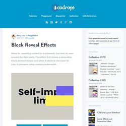 Block Reveal Effects