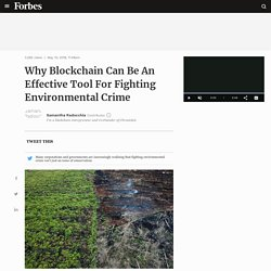 Why Blockchain Can Be An Effective Tool For Fighting Environmental Crime