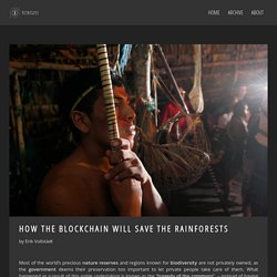 How the blockchain will save the rainforests » BITNATION Blog
