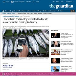 Blockchain technology trialled to tackle slavery in the fishing industry