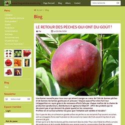 Blog - www.lesgueulescassees.org