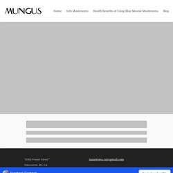 Blog Post - mungus-mushrooms