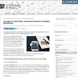 La pub sur votre blog: sources de revenus et plugins
