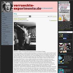 Blog - verrueckte-experimente.de