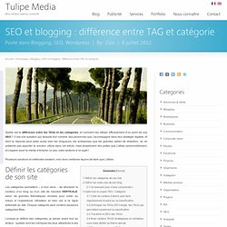 SEO et blogging : différence entre TAG et catégorie