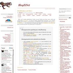 BlogZiNet - navigateurs Mozilla Firefox et autres
