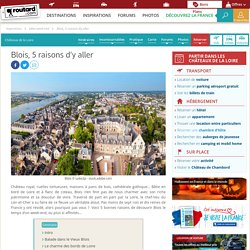 Blois, 5 raisons d'y aller : Idées week end Châteaux de la Loire