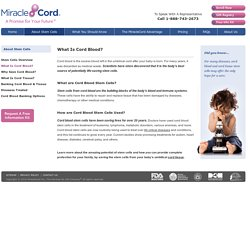What is Cord Blood? What is its Importance? How are Stem Cells Used? - MiracleCord