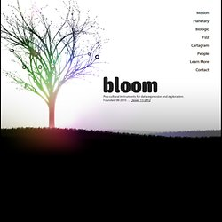 Bloom: new ways to see and communicate