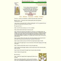 Bloomingfields Farm Garlic - - How To Make a Garlic Braid (illustrated) - -