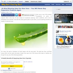 Health Benefits of Aloe Vera: Grow Your Own Medicine