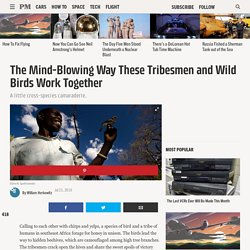 The Mind-Blowing Way These Tribesmen and Wild Birds Work Together