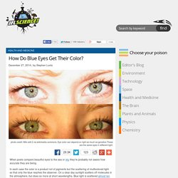 How Do Blue Eyes Get Their Color?