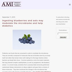 Ingesting blueberries and oats may modulate the microbiome and help diabetics — The American Microbiome Institute