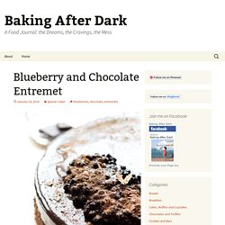 Blueberry and Chocolate Entremet - Baking After Dark