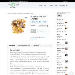 Blueberry Kush Shatter