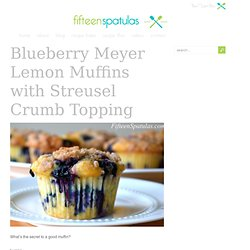 Blueberry Meyer Lemon Muffins with Streusel Crumb Topping