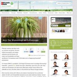 Airy: Der Blumentopf als Luftreiniger