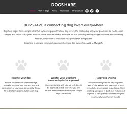 Dog Boarding Kennels & Walking Service
