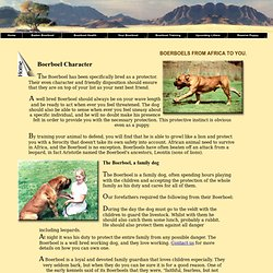 Baden Boerboel, Boerboel character and behaviour