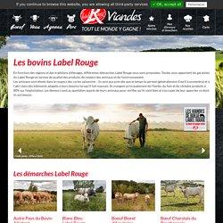 Bœuf Label Rouge, viande bovine : race de vache à viande - Label Rouge Viande