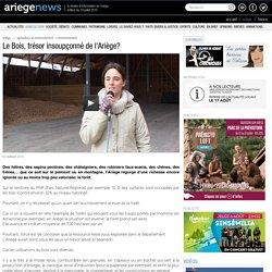 Le Bois, trésor insoupçonné de l'Ariège? 12/03/2010