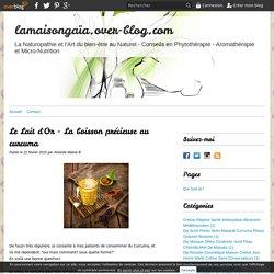 Le Lait d'Or - La boisson précieuse au curcuma - lamaisongaïa.over-blog.com