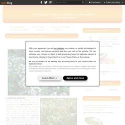 Boissons à base d'aspérule odorante - Le blog de la Confrérie des Fins Goustiers du Haut-Maine et Pail