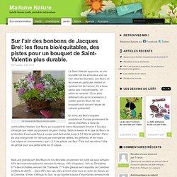 Sur l'air des bonbons de Jacques Brel: les fleurs bio/équitables, des pistes pour un bouquet de Saint-Valentin plus durable.