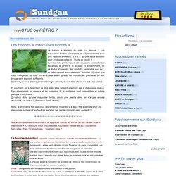 Les bonnes « mauvaises herbes » - iSundgau, le blog