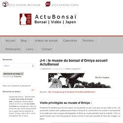 Le musée du bonsaï d'Omiya accueil ActuBonsaï -