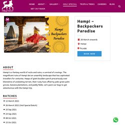 Book Hampi Trip & Tour Packages With Hikerwolf