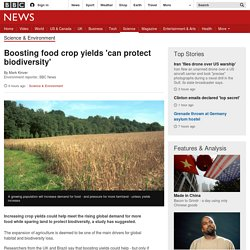 Boosting food crop yields 'can protect biodiversity'