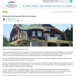 Boosting Home Security With Landscaping