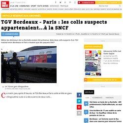 TGV Bordeaux - Paris : les colis suspects appartenaient...à la SNCF
