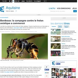 FRANCE 3 AQUITAINE 13/03/13 Bordeaux: la campagne contre le frelon asiatique a commencé