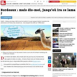 Bordeaux : mais dis-moi, jusqu'où ira ce lama ?