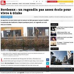 Bordeaux : un ragondin pas assez écolo pour vivre à Ginko