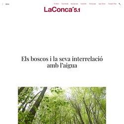 Els boscos i la seva interrelació amb l'aigua - La Conca 5.1
