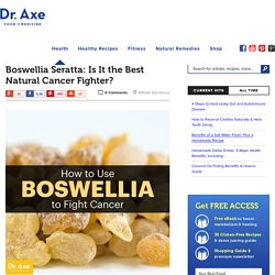 Boswellia Seratta: Is It the Best Natural Cancer Fighter?