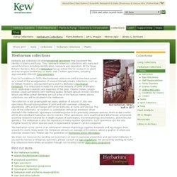 Royal Botanic Gardens, Kew: Collections: Herbarium