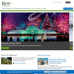 Royal Botanic Gardens, Kew - Home Page