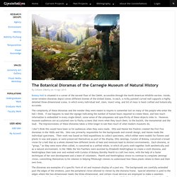 The Botanical Dioramas of the Carnegie Museum of Natural History