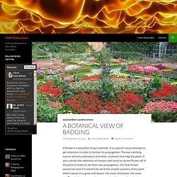 A Botanical View of Badging