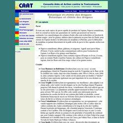 Botanique et chimie des drogues