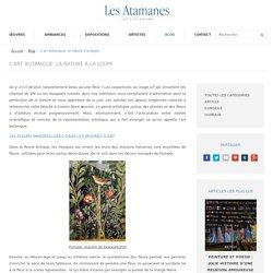 L'art botanique: la nature à la loupe