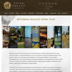 Botswana Safari - Travel Agents in Botswana